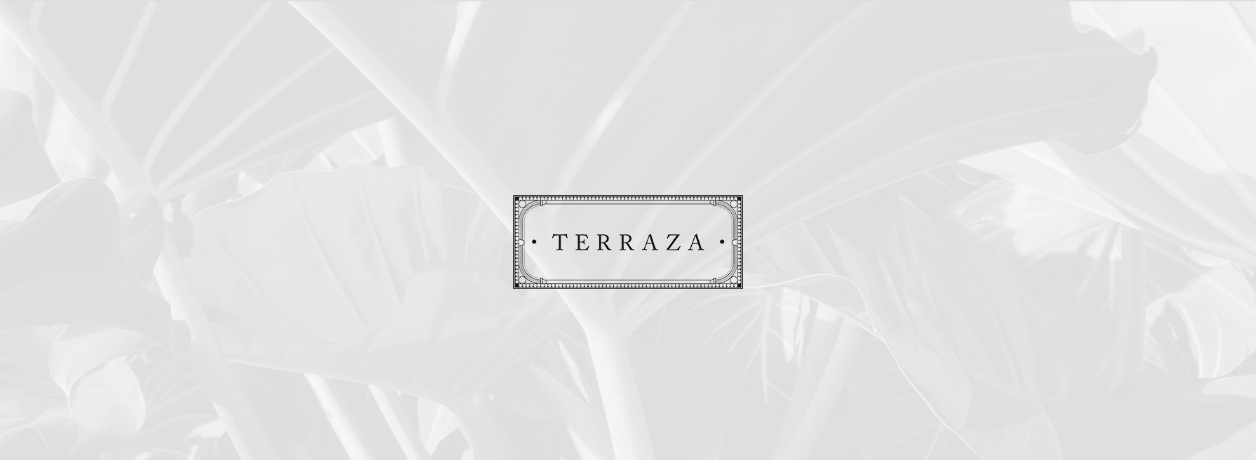 Terraza Antonio S Group Of Restaurants
